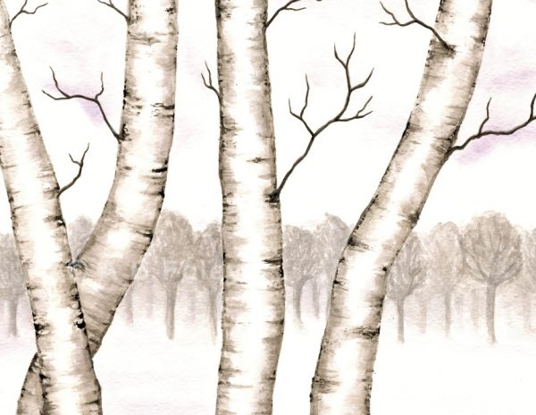 watercolor landscape painting of birch trees in snow with grey trees in the distance, close up to show detail