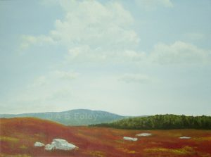 acrylic painting of red autumn blueberry field and blue sky in Maine