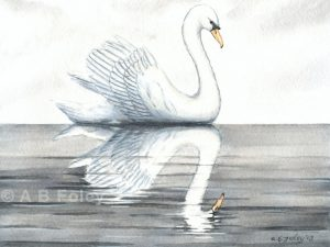 """Swan and its Reflection in Calm Water"""