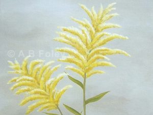 Floral painting of goldenrod flowers against a gray background