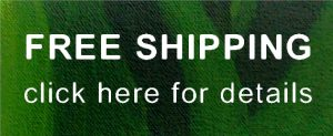 green banner advertising adverfree shipping on paintings at A B Foley Art