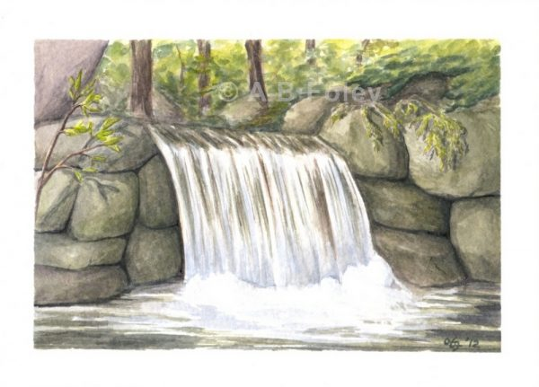 watercolor landscape painting of a small waterfall flowing over gray rocks in a forest with a white border