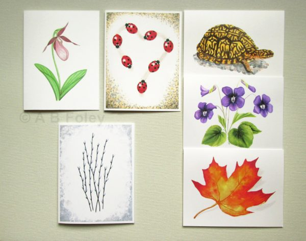 Set of 6 woodland themed nature art note cards by watercolor artist A B Foley