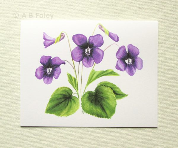 watercolor botanical art note card of common violet flower, viola sororia,, photographed on a white background
