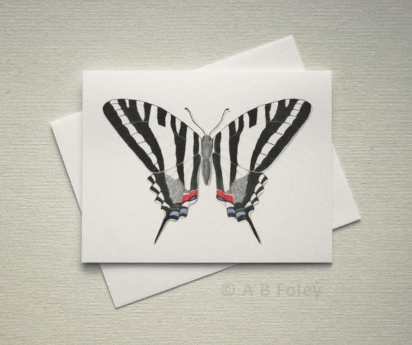 watercolor butterfly art note card of zebra swallowtail butterfly with envelope, viewed on a light gray background
