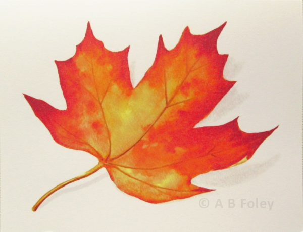 watercolor note card with red and yellow fall maple leaf