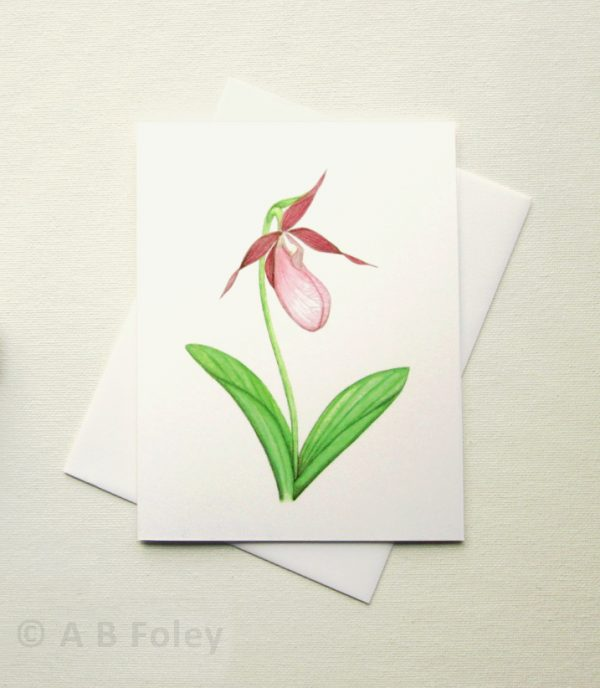 watercolor art botanical note card of pink lady's slipper orchid, photographed on a white background with envelope