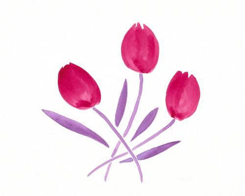 Fuchsia Tulip Trio