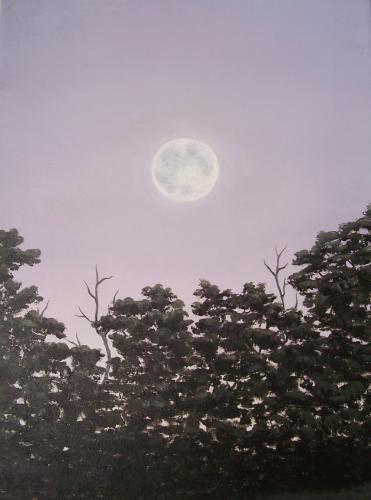 Full Moon on a Summer Evening