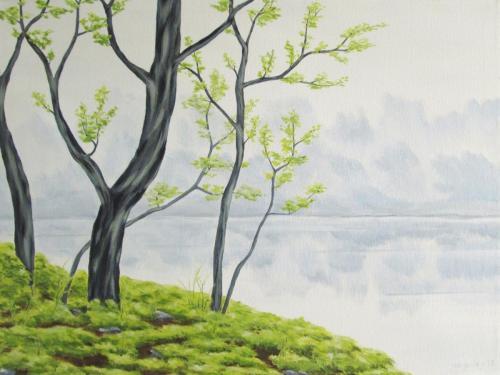 Lakeside in Springtime