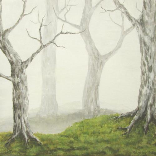 Misty Trees and Grass