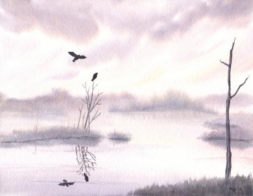 Ospreys at Dawn
