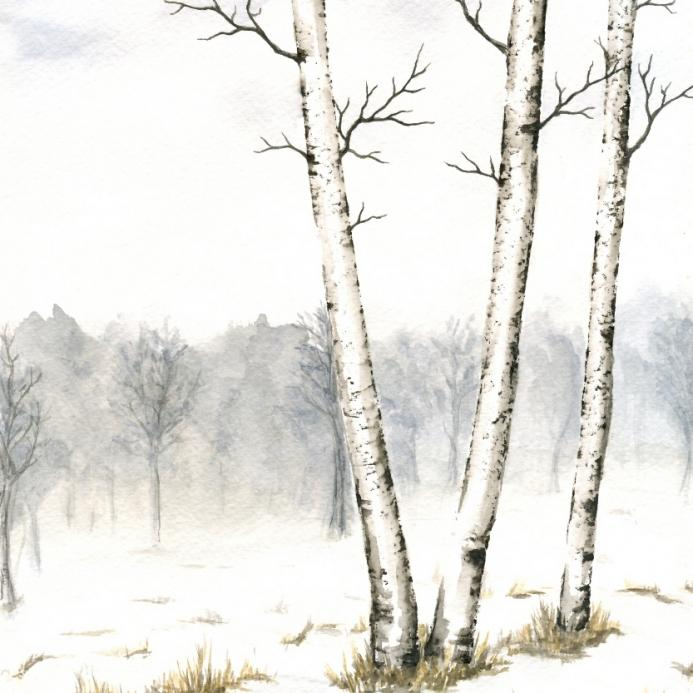 Three Birches in Late Winter