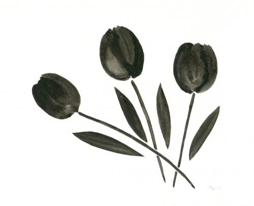 Trio of Black Tulips